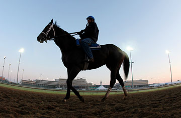 A horse trains at Churchill Downs