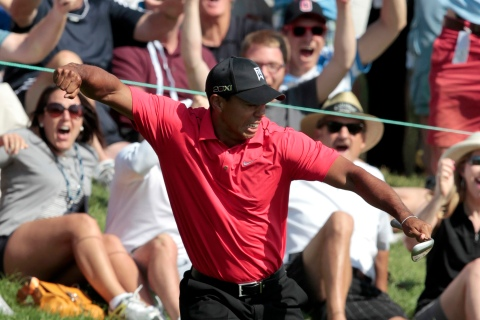 Tiger Woods of the U.S. reacts after chipping in for a birdie on the 16th hole during the final round of the Memorial Tournament at Muirfield Village Golf Club in Dublin